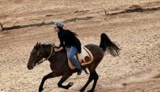 رویای پرورش اسب/تصاویر