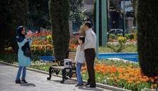گلهای لاله در پارک شهر تهران/تصاویر